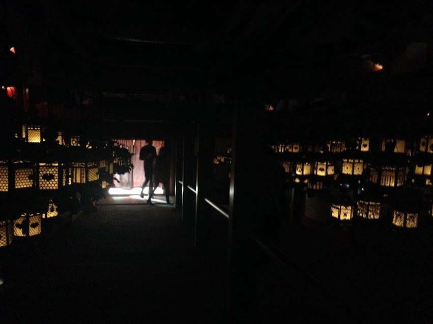 24 hours in Nara