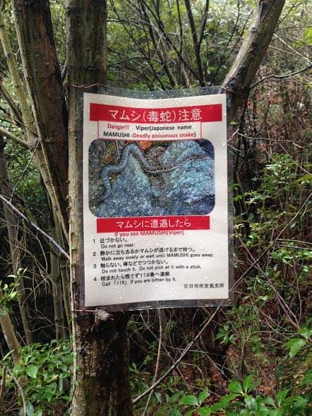 A Perfect 24 Hours In Miyajima Japan Around The World