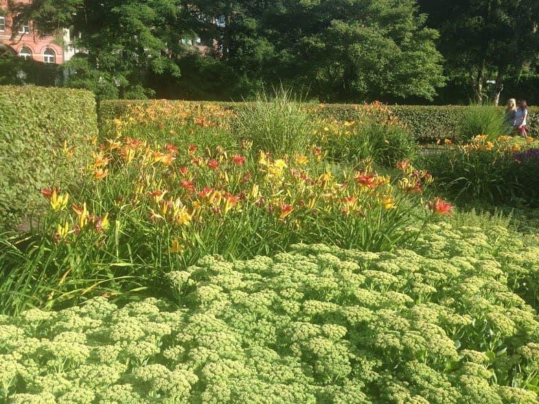 Planten un Blomen Park