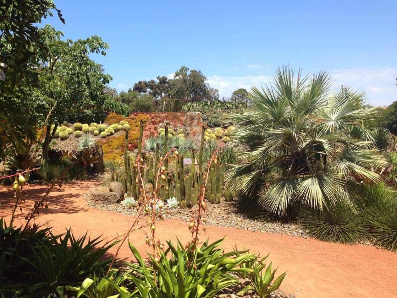 Royal Botanic Gardens Melbourne desert