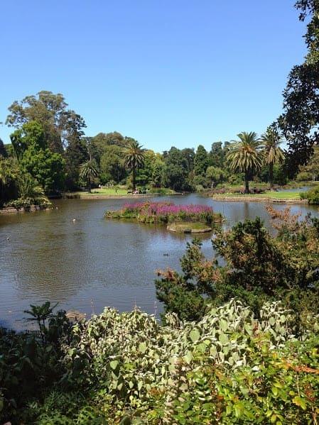 Royal Botanic Gardens Melbourne yarra