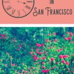 A Perfect 24 Hours in San Francisco 5