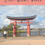 Snacking Around the World at Epcot 4