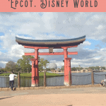 24 Hours: Snacking Around the World at Epcot