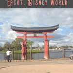 Snacking Around the World at Epcot 2