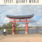 Snacking Around the World at Epcot 3