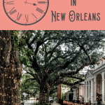 Best Things to do in the Garden District 5