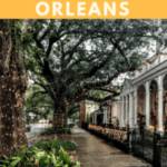 A Perfect 24 Hours in New Orleans With the Garden District