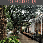 Best Things to do in the Garden District 2