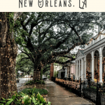 Best Things to do in the Garden District 3