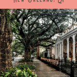 Best Things to do in the Garden District 4