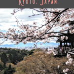 Kyoto 1 Day Itinerary 2