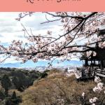 Kyoto 1 Day Itinerary 4
