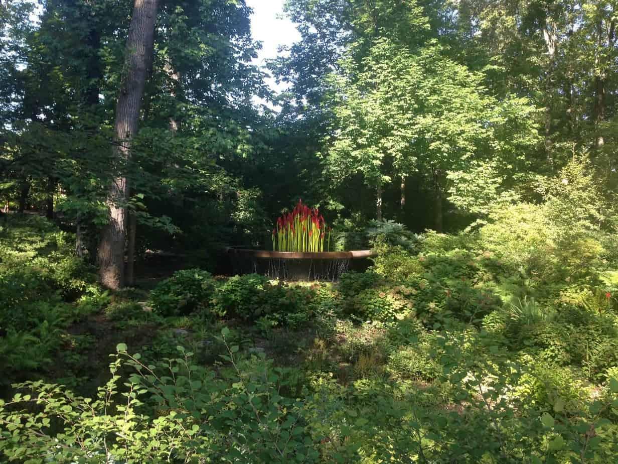 24 hours in Atlanta botanical garden