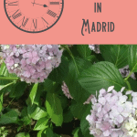 One Day in Madrid Itinerary 1