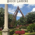 24 Hours in Busch Gardens Williamsburg VA 3