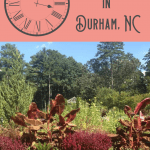 Unique Things to Do in Durham NC: A Perfect 24 Hours 1