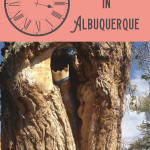 A Perfect 24 Hours in Albuquerque: Unique Things to Do 1