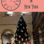 A Perfect New York in a Day Itinerary 1