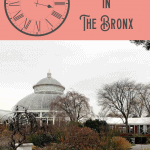 Bronx Walking Tour: A Perfect 24 Hours: 1