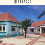 24 Hours in Barbados Shore Excursion Tours 3