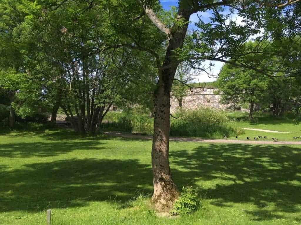 Piper Park Suomenlinna Fortress