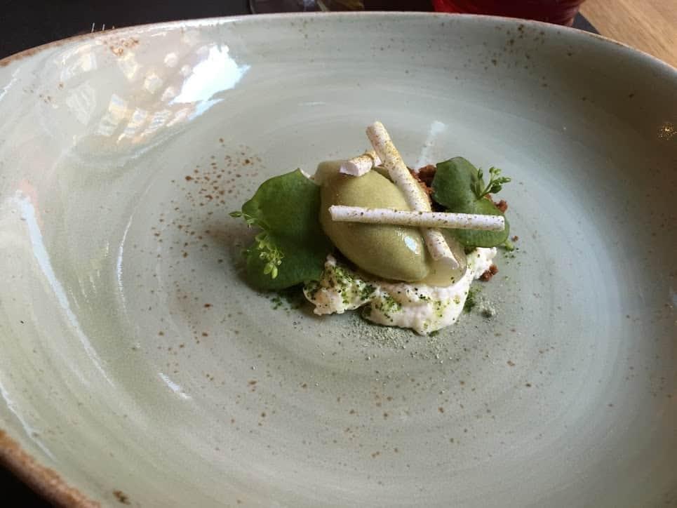 spruce sprout dessert
