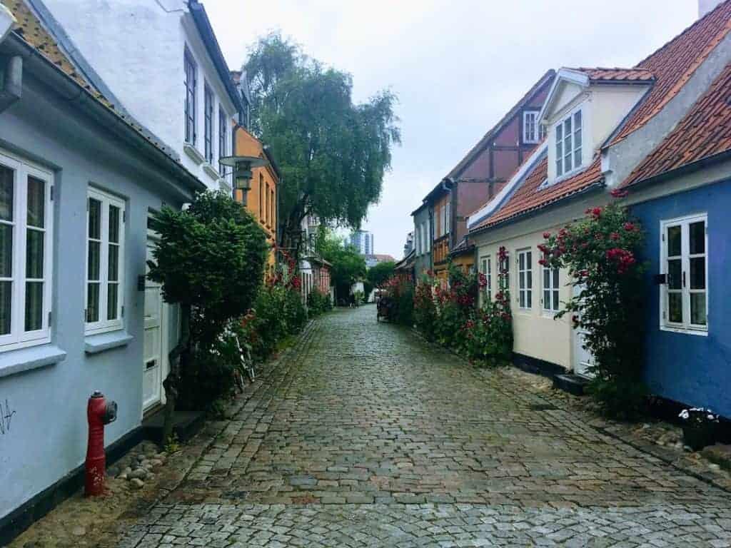 Mollestien 24 Hours: Aarhus Art Museum