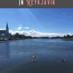 A Perfect 24 Hours in Reykjavik 1