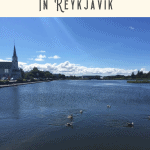 A Perfect 24 Hours in Reykjavik 2