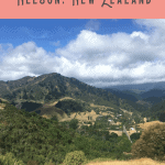 24 Hours: Best Things to do in Nelson 1