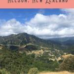 24 Hours: Best Things to do in Nelson 4