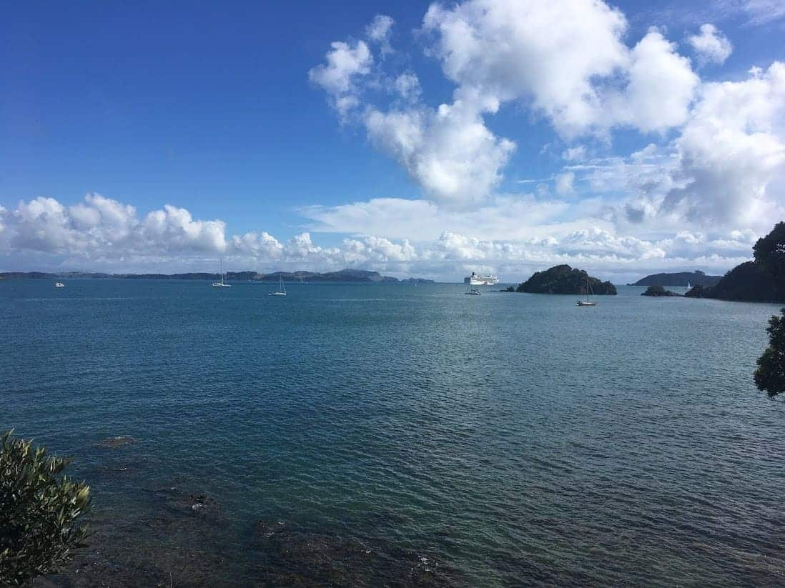 Best Things to do in Paihia