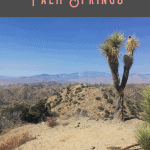 A Perfect One Day in Palm Springs Itinerary 2
