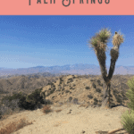 A Perfect One Day in Palm Springs Itinerary
