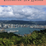 A Perfect 24 Hours in Wellington Itinerary