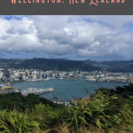 A Perfect 24 Hours in Wellington Itinerary 2