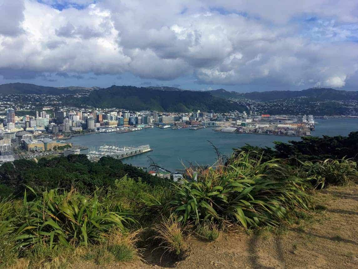 24 Hours in Wellington Itinerary