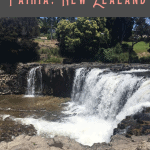 Best Things to do in Paihia: A Perfect 24 Hours 2