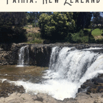Best Things to do in Paihia: A Perfect 24 Hours 3