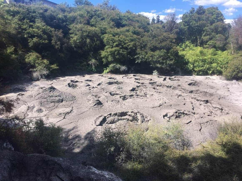 te puia mud pools