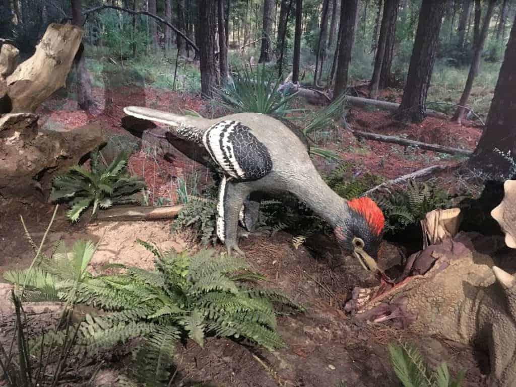 Natural History Museum Utah