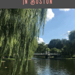 A Perfect 24 Hours in Boston 2