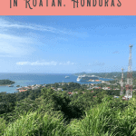 A Perfect 24 Hours in Roatan Port 1
