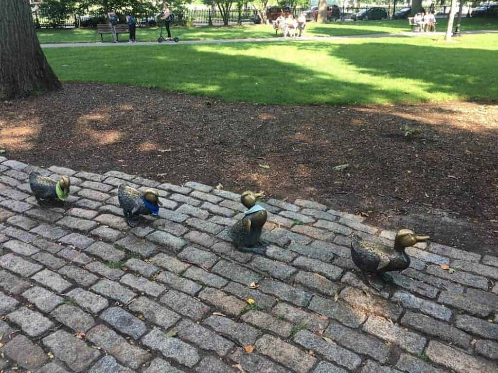 24 hours in boston public garden
