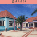 24 Hours in Barbados Shore Excursion Tours