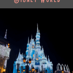 Magic Kingdom in One Day 2