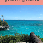 Things to Do in Nassau Port: A Perfect 24 Hours 4