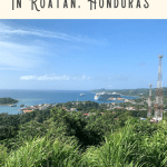 A Perfect 24 Hours in Roatan Port 3