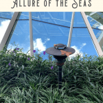 Best Things to Do on Allure of the Seas: A Perfect 24 Hours 2